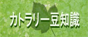 カトラリー豆知識